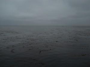 Day Seven: Sardines and San Juan Bautista