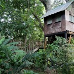 Parrot's Nest Lodge