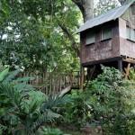 Parrot's Nest Lodge